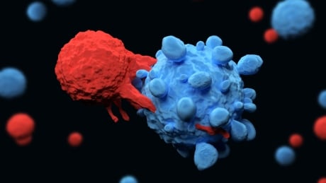 CAR-T immune therapy